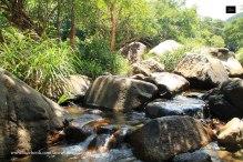 Nuoc Ngot Stream - Ninh Thuan - Vietnam-(4)