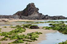 lo-dieu-beach-vietnam-feb2017-4